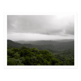 Foggy Mountain at El Yunque National Rainforest Postcard