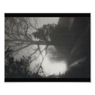 Foggy Path Photo Print