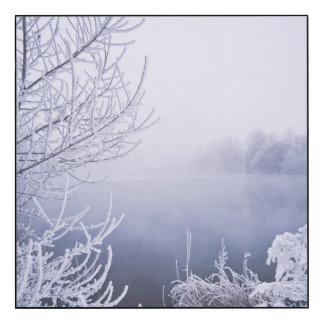 Foggy Winter Day by the River