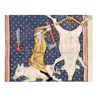Fol.59v December: Killing Pigs Postcard