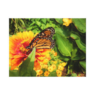 Folded Wings Monarch Butterfly on Zinnia Painting Gallery Wrap Canvas