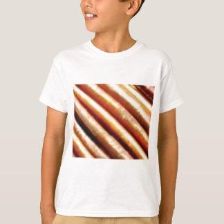 folds of copper T-Shirt