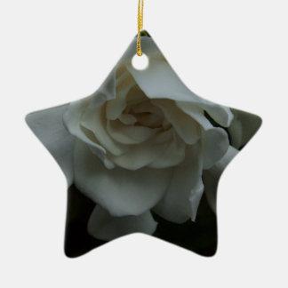 Folds of Ivory Ceramic Star Decoration