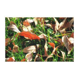 Foliage and Grass Stretched Canvas Print
