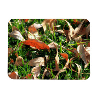 Foliage and Grass Rectangle Magnet