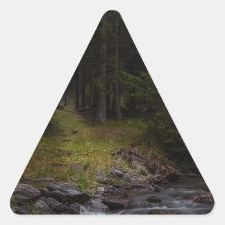 follow the light triangle sticker