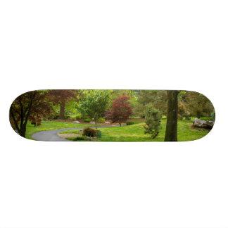 Follow The Path Pano 21.6 Cm Skateboard Deck