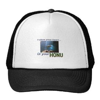 Follow your Honu Cap