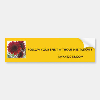 FOLLOW YOUR SPIRIT ... BUMPER STICKER
