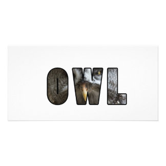 Font owl photo cards