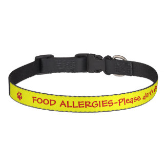 Food Allergy Medical Alert-Yellow Dog Collars