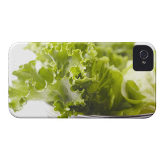 Food, Food And Drink, Vegetable, Lettuce, iPhone 4 Cover
