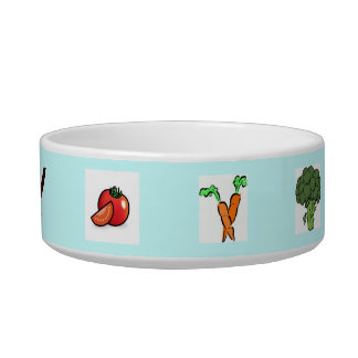 Food for Thought Cat Food Bowl