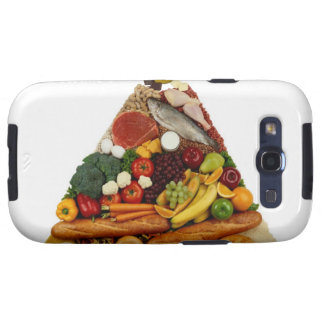 Food Pyramid Galaxy SIII Cover