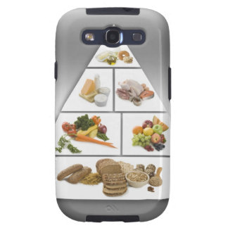 Food pyramid galaxy s3 case