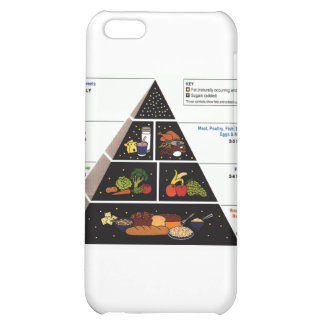 Food Pyramid iPhone 5C Covers