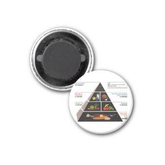 Food Pyramid 3 Cm Round Magnet