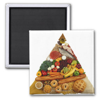 Food Pyramid Square Magnet
