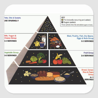 Food Pyramid Square Stickers