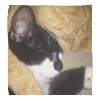 Foofy and Sandybean snuggling for a nap Bandana
