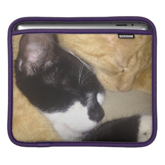 Foofy and Sandybean snuggling for a nap iPad Sleeve