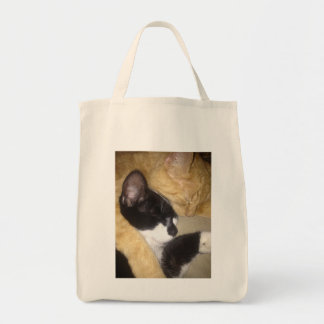 Foofy and Sandybean snuggling for a nap Tote Bag