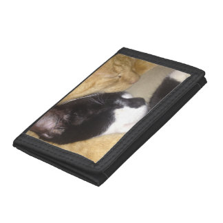 Foofy and Sandybean snuggling for a nap Trifold Wallets