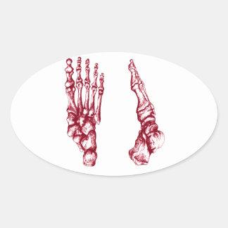Foot bones. sticker