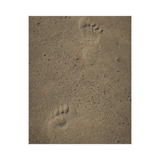 Foot Prints In The Sand at Virginia Beach