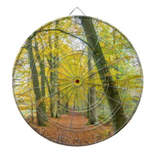 Footpath in forest covered with fallen leaves dartboard