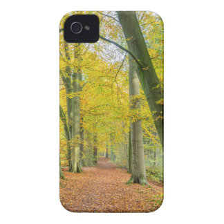 Footpath in forest covered with fallen leaves iPhone 4 Case-Mate cases