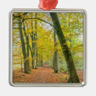 Footpath in forest covered with fallen leaves metal ornament