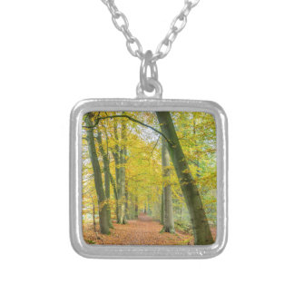 Footpath in forest covered with fallen leaves silver plated necklace
