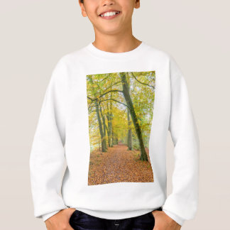 Footpath in forest covered with fallen leaves sweatshirt