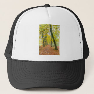 Footpath in forest covered with fallen leaves trucker hat
