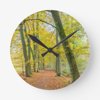 Footpath in forest covered with fallen leaves wallclock