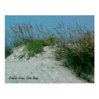 Footprints and Sand Dunes, Okracoke Island, NC Post Card