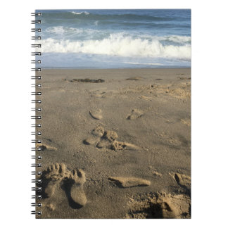 Footprints in the sand, beach and waves notebooks