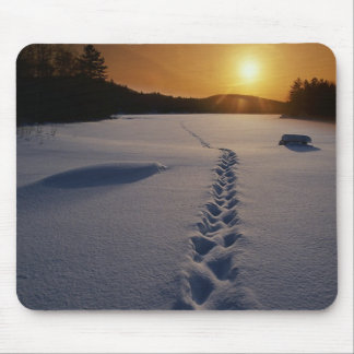 Footprints In the Snow mousepad