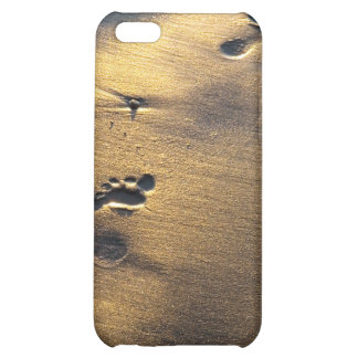 Footprints iPhone case Case For iPhone 5C