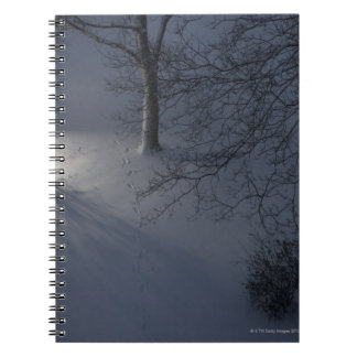 Footprints on Snow, Hamburg, Germany Notebooks
