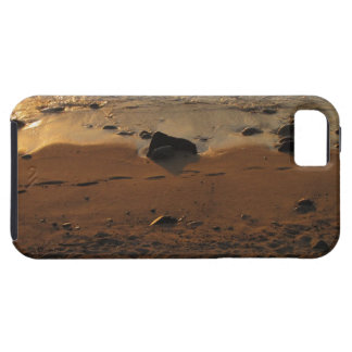 Footprints on the Beach iPhone 5 Cover