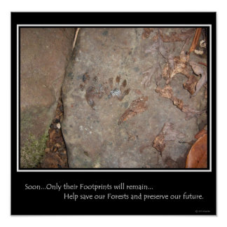 Footprints Remain Poster