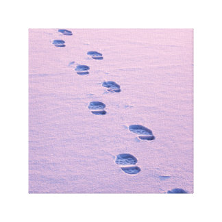 Footsteps on snow canvas print