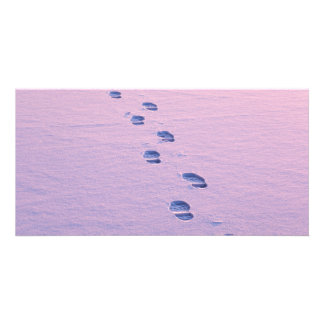 Footsteps on snow photo card