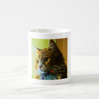 For Cat's Lovers Coffee Mug