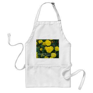 For floristas standard apron