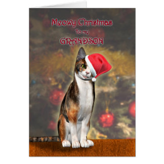 For Grandson, a funny cat in a Christmas hat Card