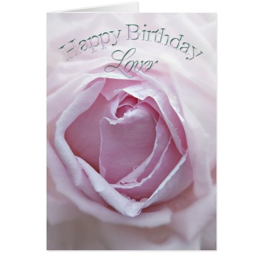 For Lover, a beautiful pink rose Greeting Card
