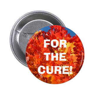 For the Cure buttons Find a Cure Buttons Autumn